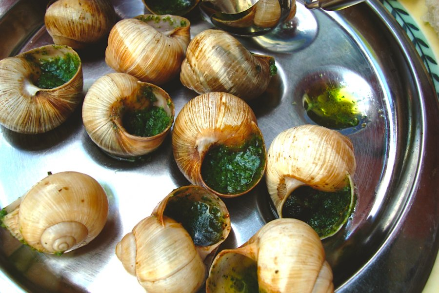 weirdorgood_escargot2_0(1)