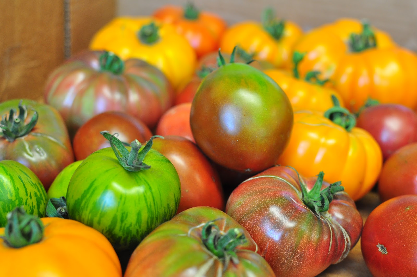 Orcas Heirloom Tomatoes
