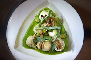 Riccota Gnudi- Fava bean cream, roasted fennel, broad beans and lemon jam - Photo Credit John Nation._preview